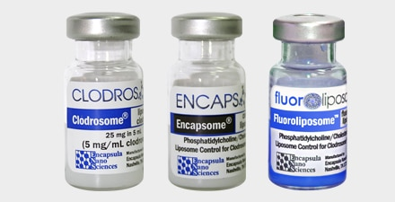 The kit contains one vial of Clodrosome, one vial of Encapsome, and one vial of Fluoroliposome-DiD